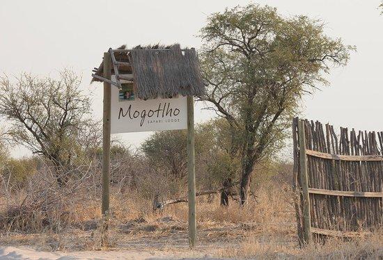 Mogothlo Safari Lodge : Einfahrt zur Lodge