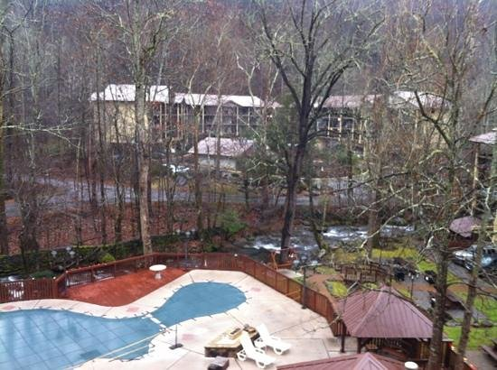 Tree Tops Resort: view from our room in building 9.