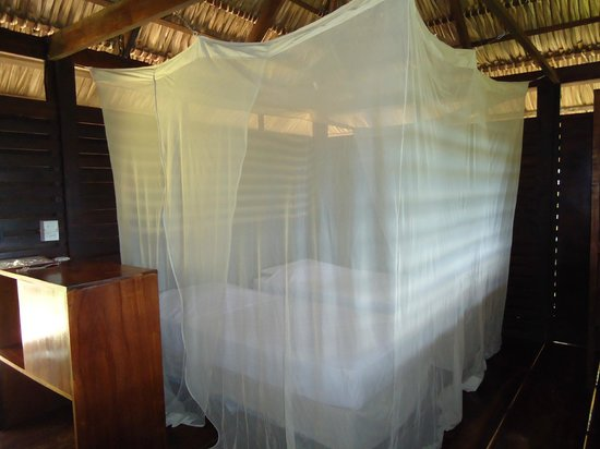 Buena Vista Surf Club: Inside tree-house, beds with bednets