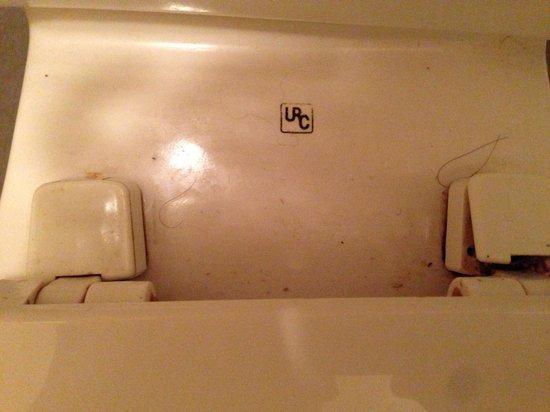Red Roof Inn Santee: Dirty toilet