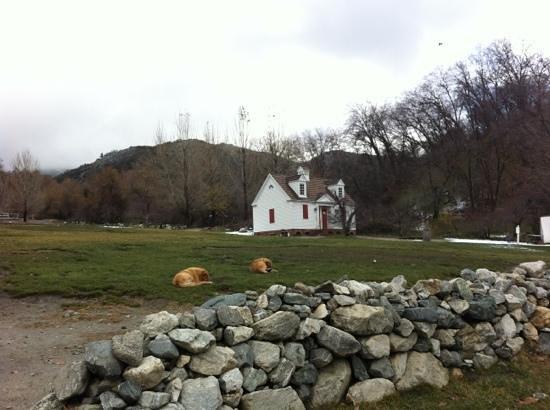 Riley's Farm: Colonial Home