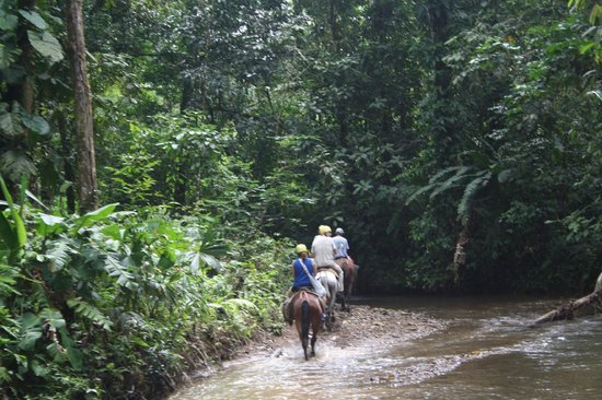 Finca Valmy Tours: Riding in the river
