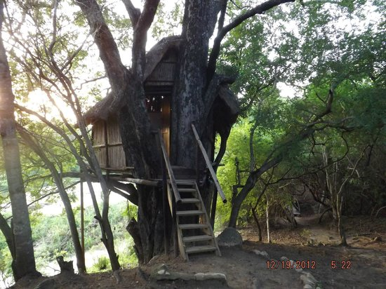 Tremisana Game Lodge: Treehouse #2