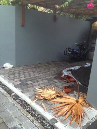 The Residence Seminyak: More trash outside Villa