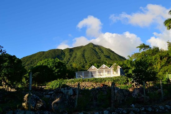 The Hermitage Plantation Inn: The Yellow Manor House with Mt. Nevis in background