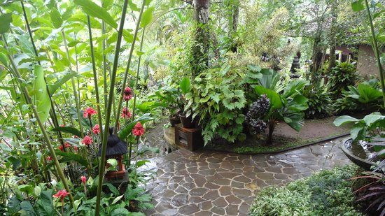 Villa Sarna Ubud: Grounds