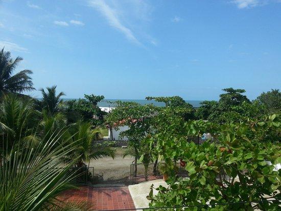 Hostal Arrecifes: Vista la terraza.