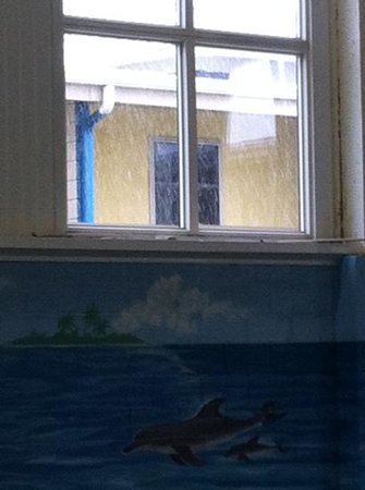 Carribean Indoor Water Park : saw snow from the hot tub