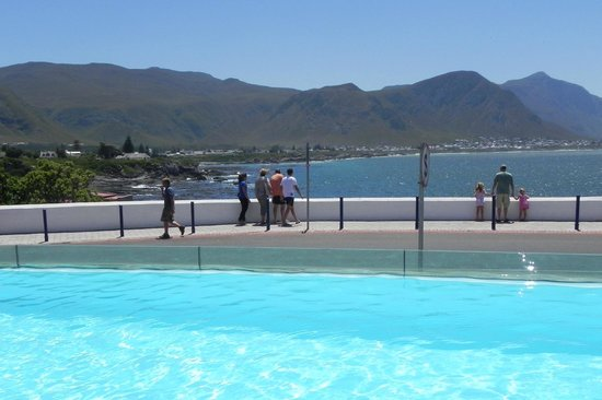 Harbour House Hotel: Harbour House pool