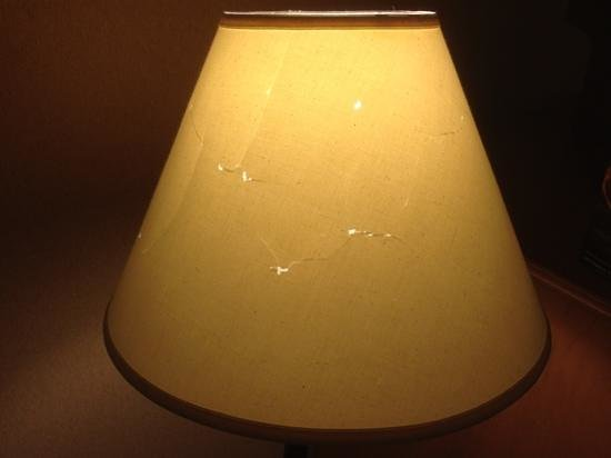 Sportsmen's Lodge Hotel: abused lampshade