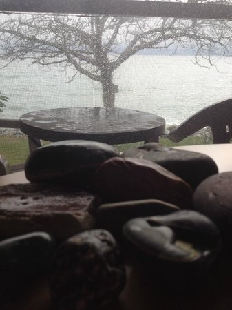 The Driftwood Inn: Room with a view - rocks collected from walk frame the tree outside and ocean.