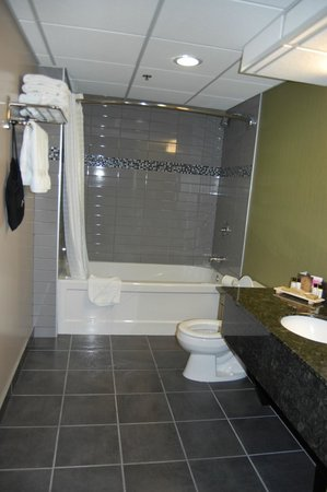 Sawridge Inn and Conference Centre Edmonton South : Bathroom