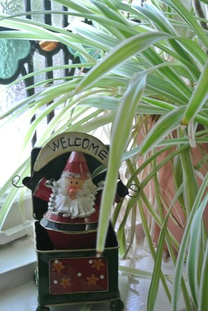 Bentham Lodge Guest House: christmas decor