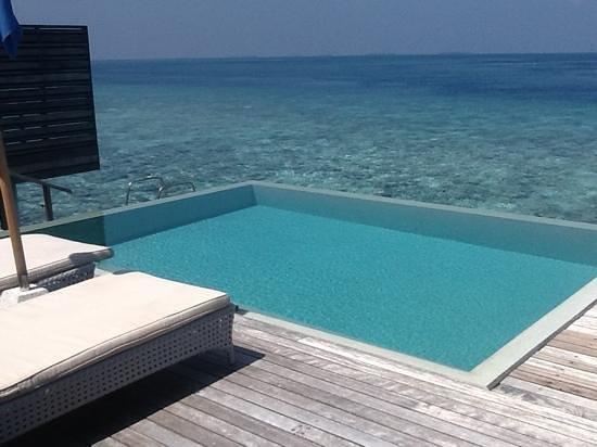 Dusit Thani Maldives: ocean villa plunge pool