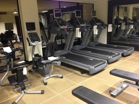 Hilton Houston Plaza/Medical Center : Fitness center