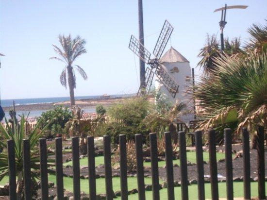 Barcelo Fuerteventura Thalasso Spa: hotel grounds