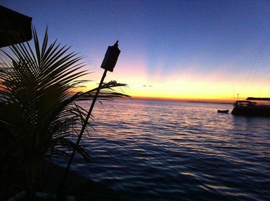 Djambo: capturing the sunset