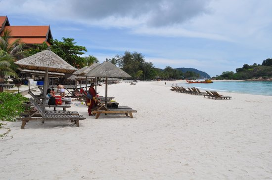 Laguna Redang Island Resort : Beach Area