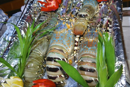 Club Med Kani: Delicious lobster - dinner of Christmas day
