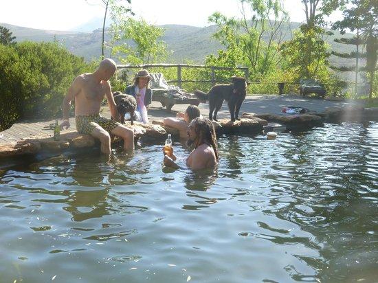 Porcupine Hills Guestfarm: Hill House Pool