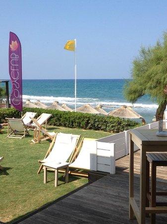 Rethymno Palace: Le bar de la plage 