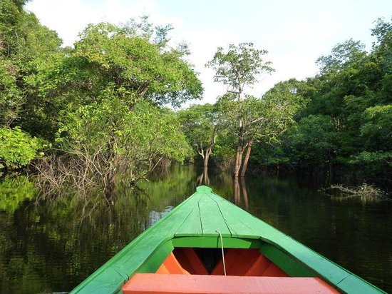 Tariri Amazon Lodge: Amazon river
