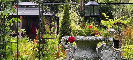 Colborne Guest House: Gardens