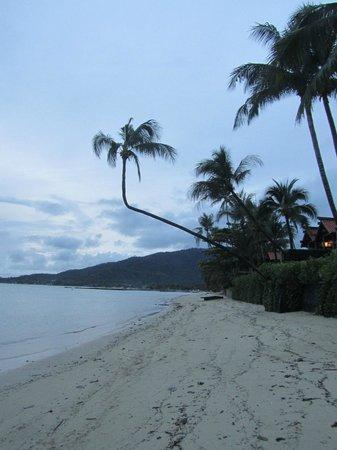 Grand Manita Beach Resort: Blick Richtung Osten