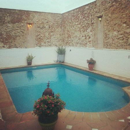 La Villa Marbella: Small pool