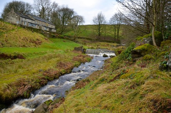 Jerry and Bens Cottages: View from down stream