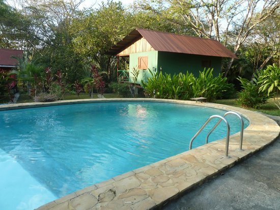 Hotel Casacolores: Pool mit Grünem Häuschen
