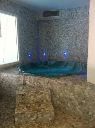 Hotel Carlina: Spa