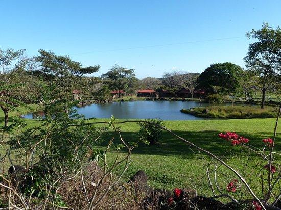 Rincon de la Vieja Lodge: Gartenanlage
