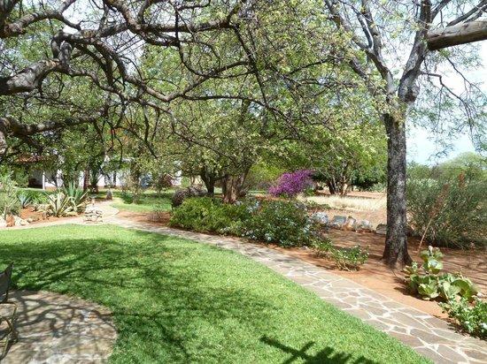 Matunda Guest Farm (Gastefarm): Lovely grounds.