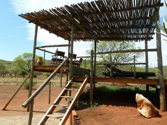 Matunda Guest Farm (Gastefarm): Wildlife spotting centre