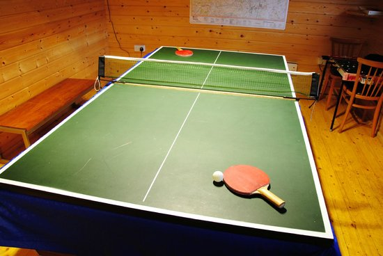 Little Boynes Holiday Cottages: Table tennis in the games room