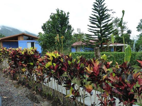 B&B Hotel Sueno Celeste: Gartenanlage