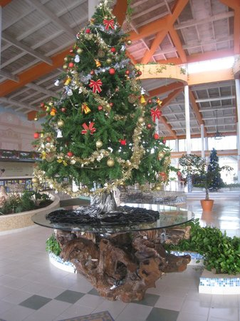 Hotel Playa Costa Verde: christmas decor in lobby