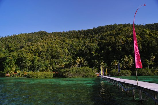 Mansuar Island, Indonezja: From jetty to land