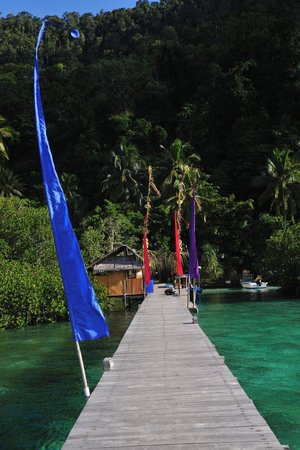 Raja Ampat Dive Lodge: From jetty to land