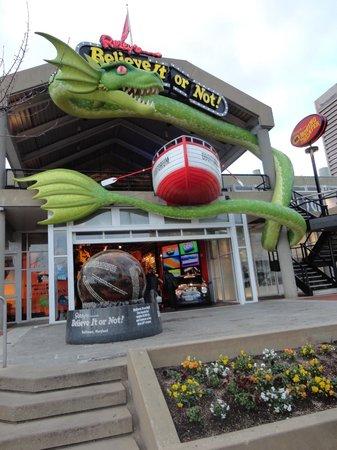 Ripley's Believe It or Not! Baltimore: Ripley's Believe It or Not Baltimore Inner Harbor
