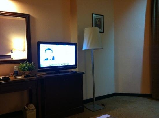 Hotel Selesa Johor Bahru: LCD tv