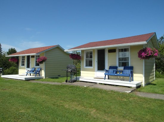 Atlantic View Motel & Cottages: Blue Heron