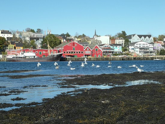 Atlantic View Motel & Cottages : Lunenburg