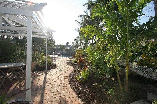 An Island Getaway at Palm Tree Villas: Pool walkway