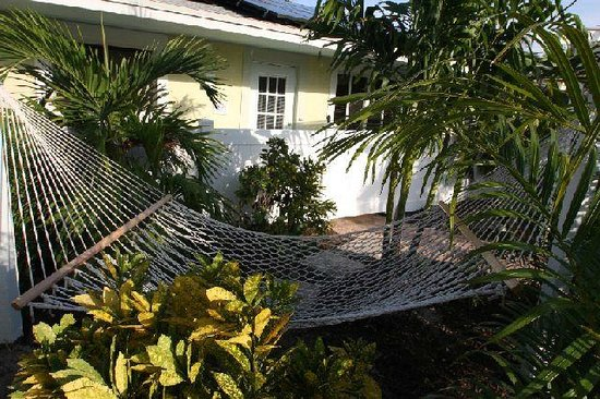 An Island Getaway at Palm Tree Villas: Relaxing tucked away hammock