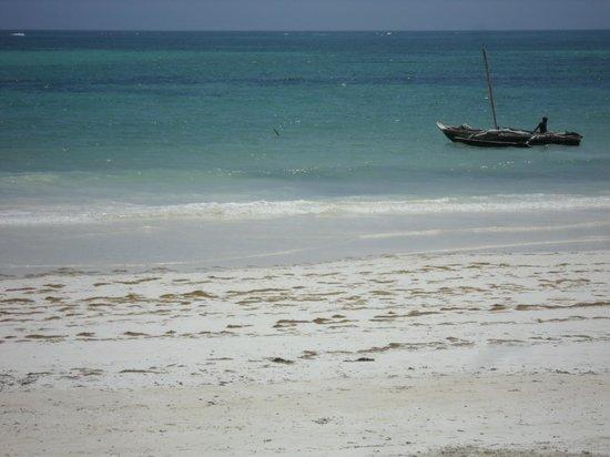 Neptune Paradise Beach Resort & Spa: spiaggia con bassa marea
