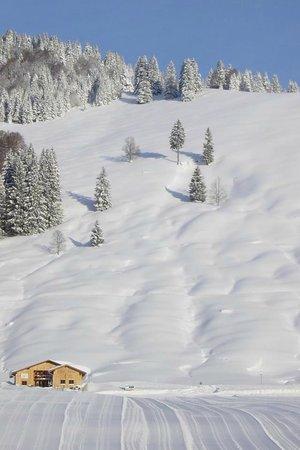 Bergbahn- und Skilift Balderschwang