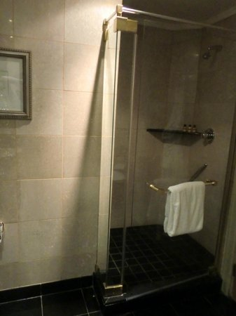 Hyatt Regency Johannesburg: Shower