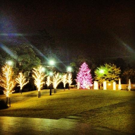 Amerikan Mountain Park: 12月のライトアップ